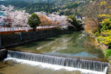 Spring in Japan - Arashiyama and Hozu river in April