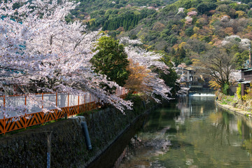 Spring in Japan - Arashiyama and Hozu river