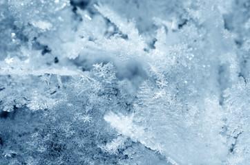Snow crystals close-up