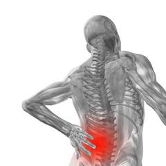 Conceptual 3D human pain anatomy
