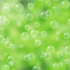 Soap bubbles on the green blurred background