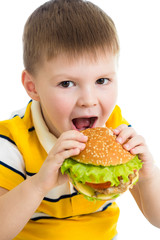 Child boy eating hamburger