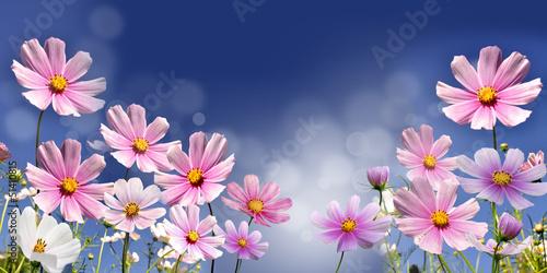 Obraz na Szkle kwiaty