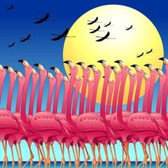 Pink Flamingos's Dance-La Danza dei Fenicotteri Rosa-Vector