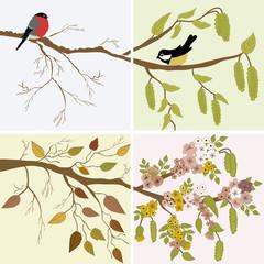 Four seasons- spring, summer, autumn, winter