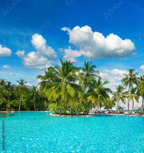 basen z palmami i błękitne niebo