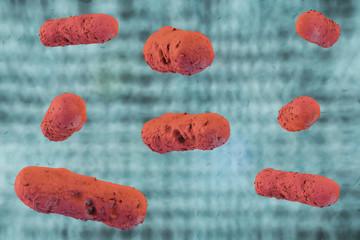 Ehec Bakterien - 3D Render