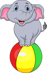 Cute elphant standing on a colorful ball