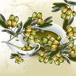 Background with realistic vector olives and olive oil  on white