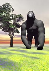 A gorilla which thinks