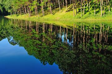 Reflection of lake in  Pang Ung Forestry Plantations, Maehongson