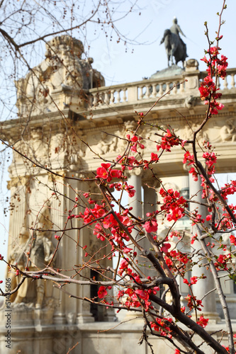 Blooming tree on background of monument to Alfonso XII