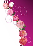 seven pink rose decoration
