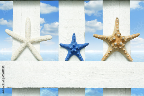 Starfish at sea on beach on vintage boards marine background