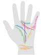 Colorful labeled illustration about hand reading – Vector