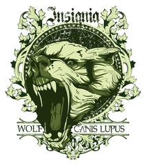 Canis lupus insignia