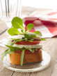 Canapes with tomatoes and mozzarella