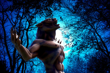 lycan how in up side view