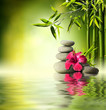 Leinwanddruck Bild - Stones, red hibiscus and Bamboo on the water