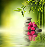 Stones, red hibiscus and Bamboo on the water