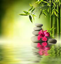 Stones, hibiscus rouge et bambou sur l'eau