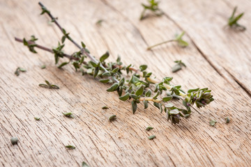 Thyme sprigs over wooden table