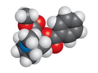 Cocaine molecule space fill model - C17H21NO