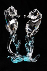 Crystal seahorses © Arena Photo UK