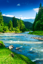 górskiej rzeki