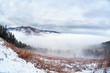 dense fog in Harz mountains