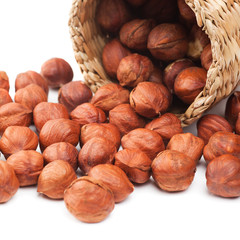 hazelnuts and basket on white