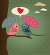 Birds and umbrellas
