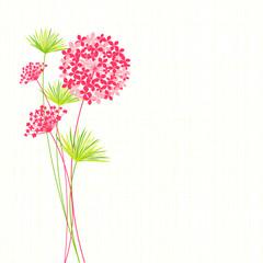 Springtime Hydrangea Flower Background