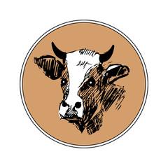 cow-head2