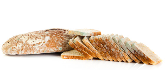 Mold on bread. Mouldy bread, isolated on a white background