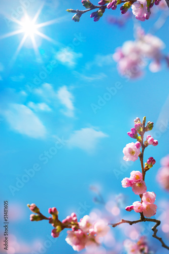 Fotobehang Lente abstract floral spring background