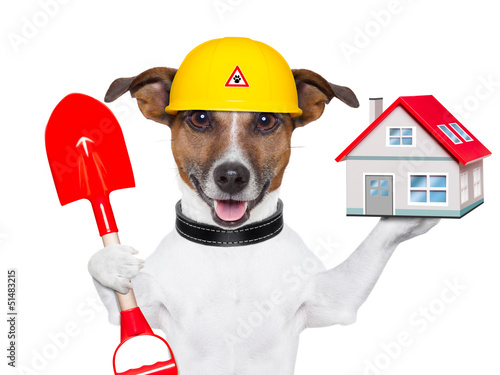 home dog builder