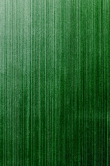 old green wallpaper background