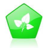 eco green pentagon web glossy icon