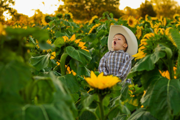 Young Farmer Boy Crowing in Sunflower Patch