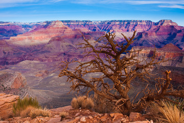 Landscape in Grand Canyon National Park , Arizona, USA