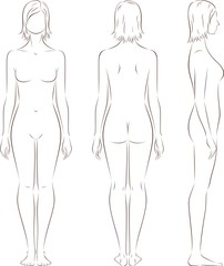 Vector illustration of woman's figure. Silhouettes