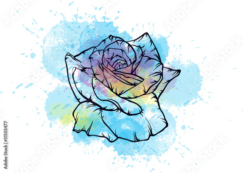 blue watercolor rose