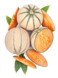 Cantaloupe melones