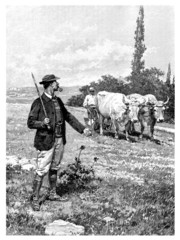 Rural Scene - 19th century