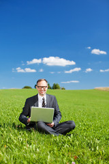 manager mit laptop sitzt auf der grünen wiese