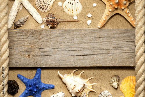 Starfish and shells on beach and board background concept