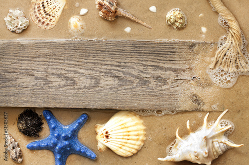 Starfish and shells on beach with empty board background concept