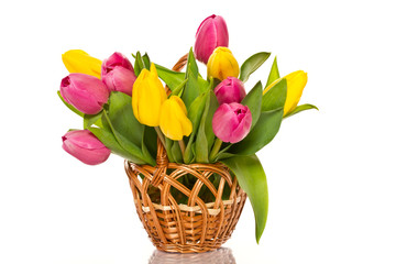 wicker basket with tulips