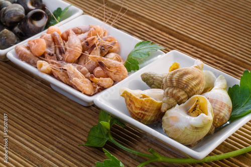 Sea shells with herbs on a wooden background